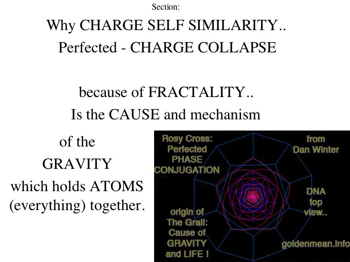 http://goldenmean.info/creation/Slide6.jpg